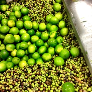Fresh limes to be crushed with olives